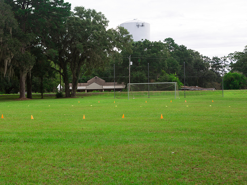 PE Field